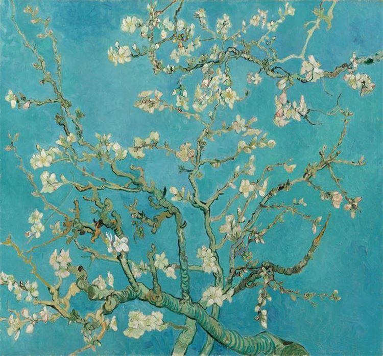 Çiçek Açan Badem Ağacı, 1890 picture