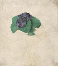 Menekşe Buketi, 1505 dolayları