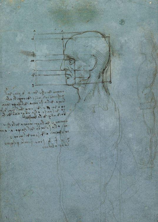 Yandan bakışla insan başı çalışması, 1490 dolayları picture