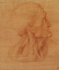 Son Akşam Yemeği için çalışma, Havari Yahuda'nın başı, 1495 dolayları, Kırmızımsı özel kâğıt üzerine kırmızı tebeşir, 25.2 x 17.2 cm, Royal Collection, Windsor Castle, İngiltere.