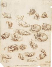Show Cats, Lions and a Dragon, c. 1513-1518 details
