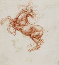 Show A Rearing Horse, c. 1503-1504 details
