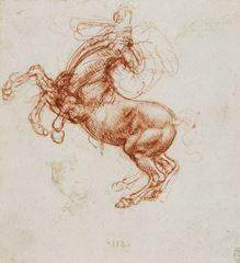 Şaha kalkmış at, 1503-1504 dolayları, Kalem, mürekkep, kırmızı tebeşir, Royal Collection, Windsor Castle, İngiltere.