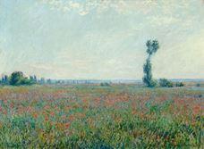 Show Poppy Field, 1881 details