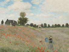 Show Poppy Field, 1873 details