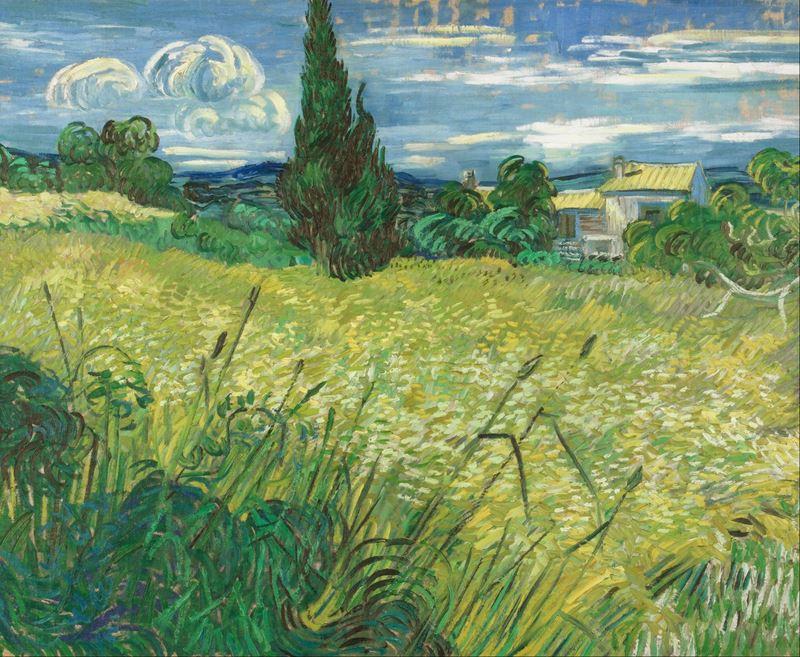 Selvi ile Yeşil Buğday Tarlası, 1889 resmi