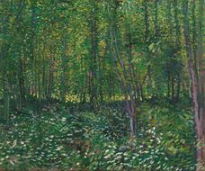 Show Trees and Undergrowth, 1887 details