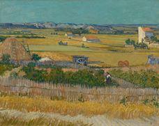 Hasat, 1888
