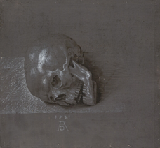 Kafatası, Aziz Hieronymus İçin Çalışma