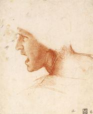 Anghiari Savaşı'nda bir asker başı için çalışma, 1504-1505 dolayları