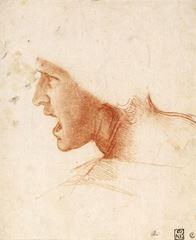 Anghiari Savaşı için bir savaşçı yüzüne ilişkin çalışma, 1504-1505 dolayları, Kırmızı tebeşir, 226 x 186 mm, Szépművészeti Múzeum, Budapest, Macaristan.