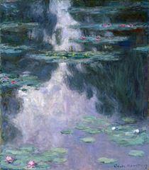 Nilüferler, 1907, Tuval üzerine yağlıboya, 92.1 × 81.2 cm, The Museum of Fine Arts, Houston, ABD.
