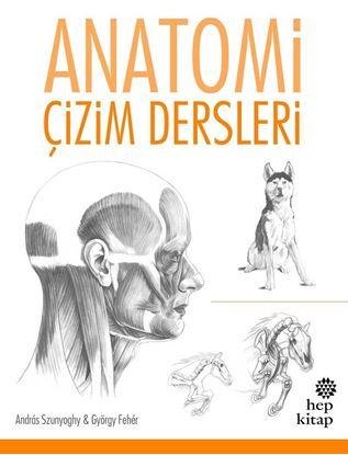 Anatomi, Çizim Dersleri