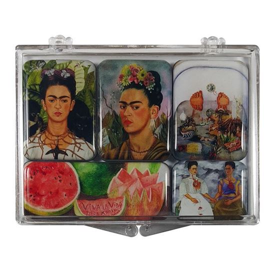 Frida 5'li Magnet Set