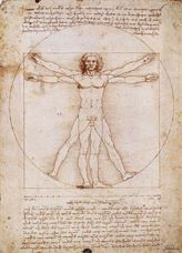 Show The Vitruvian Man, c. 1490 details