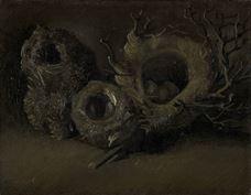 Show Birds' Nests, 1885 details