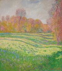 Show Meadow at Giverny, 1886 details
