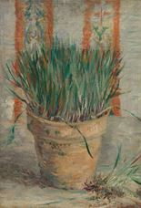 Show Flowerpot with Garlic Chives, 1887 details