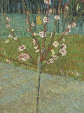 Show Peach Tree in Blossom, 1888 details