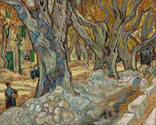 Büyük Çınar Ağaçları, 1889