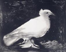 Güvercin, 1949