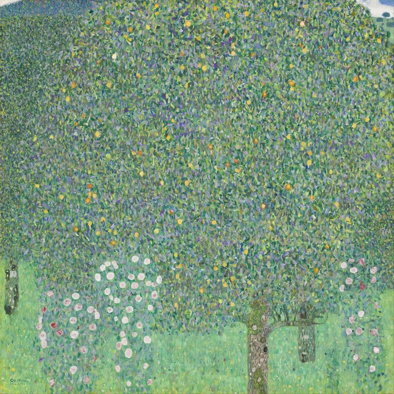Picture for Rose Bushes Under The Trees, 1904