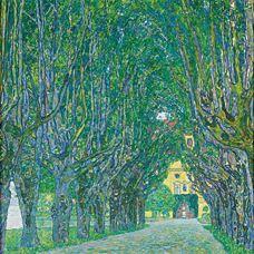 Schloss Kammer Park'ındaki Ağaçlı Yol, 1912