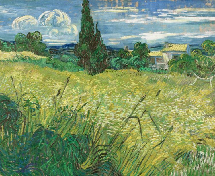 Selvi ile Yeşil Buğday Tarlası, 1889 picture