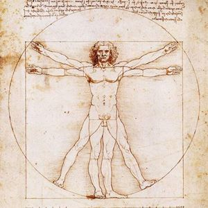 Picture of The Vitruvian Man - Leonardo da Vinci