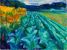 Show Cabbage Field, 1915 details