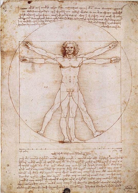 Vitruvius Adamı, 1490 dolayları picture