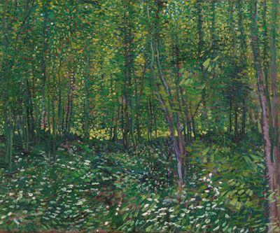 Show Ağaçlar ve Çalılar, 1887, Tuval üzerine yağlıboya, 46.2 x 55.2 cm, Van Gogh Museum, Amsterdam, Hollanda. details