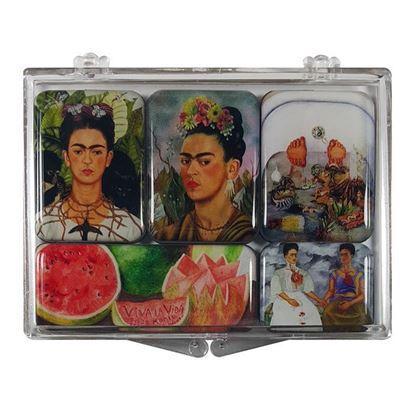 Frida 5'li Magnet Set